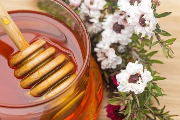 pot-of-manuka-honey